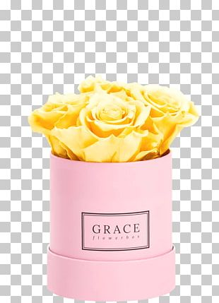Rose Flower Box Pink Cut Flowers PNG