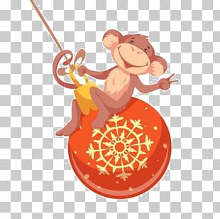 Monkey Photography PNG