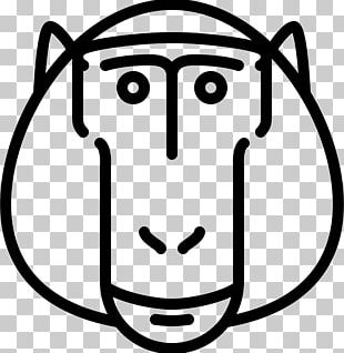 Baboons Computer Icons PNG