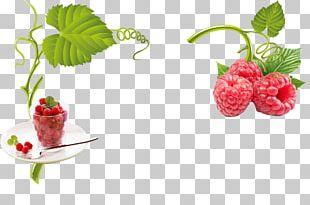 Raspberry Strawberry Frutti Di Bosco Fruit PNG