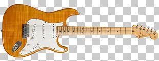 Electric Guitar Fender Stratocaster Fender Duo-Sonic Fender Bullet PNG