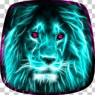 Lion Desktop Tiger Animal Mobile Phones PNG