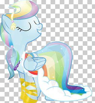 Rainbow Dash Pony Twilight Sparkle Pinkie Pie Fluttershy PNG