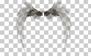 3D Rendering Wings 3D PNG