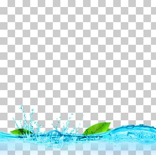 Blue Fresh Water Leaves Decorative Patterns PNG