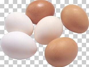 Fried Egg Deviled Egg Egg White PNG