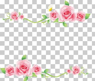 Borders And Frames Rose Flower Pink PNG