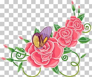 Rose Flower Floral Design PNG