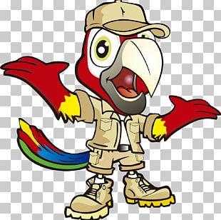 Beak Character Cartoon Fiction Chicken As Food PNG
