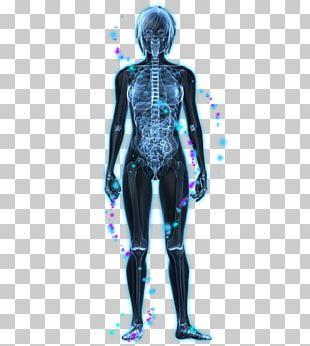 Vagus Nerve Parasympathetic Nervous System Autonomic Nervous System PNG