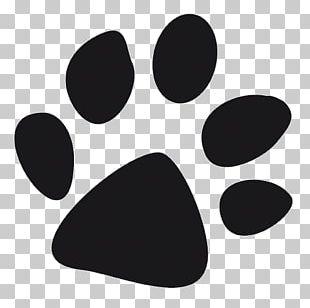 Dog Paw Birthday Cat Footprint PNG