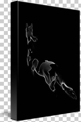 Horse Black Silhouette Photography White PNG