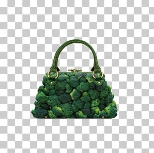 Photographer Fashion Accessory Food Handbag PNG