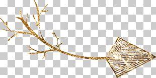 Gold Particle Euclidean Chemical Element PNG