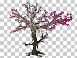 Cherry Blossom Cut Flowers Purple PNG