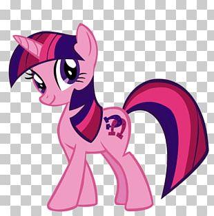 Twilight Sparkle Pinkie Pie Rarity Applejack Pony PNG
