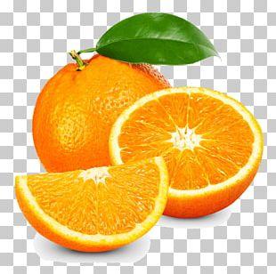 Vitamin C Anti-aging Cream Skin Care Lotion PNG
