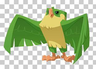 Beak Falcon Bird Of Prey PNG