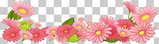Flower Garden Stock Photography PNG