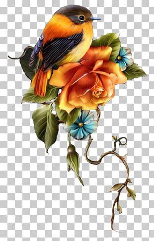 Flower Blog Avatar PNG