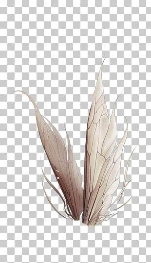Fairy Idea Illustration PNG