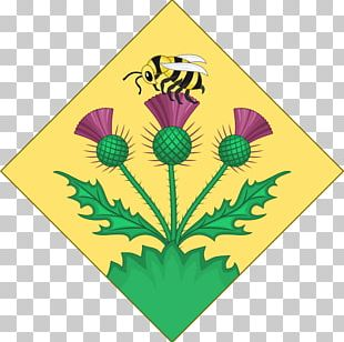 Coat Of Arms British Royal Family Heraldry Crest Princess PNG