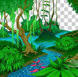 Tropical And Subtropical Moist Broadleaf Forests Tropical Forest Jungle Euclidean PNG