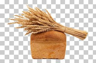 Whole Grain Photography Bread Wheat PNG