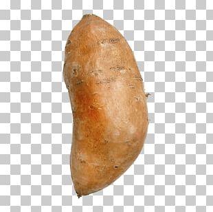 Yam Baked Potato Vegetable Potato Onion PNG