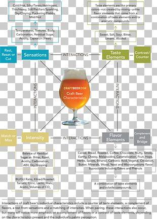 Beer Michigan Brewing Company Distilled Beverage Pilsner Lager PNG