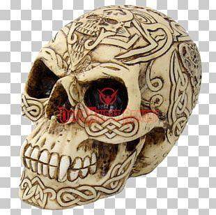 Human Skull Celts Skeleton Bone PNG