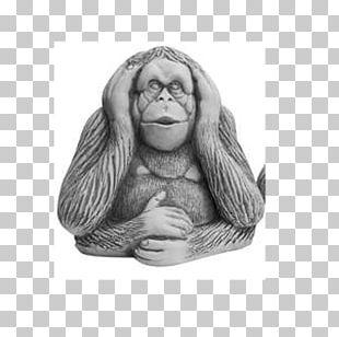 Gorilla Three Wise Monkeys Drawing Visual Perception PNG