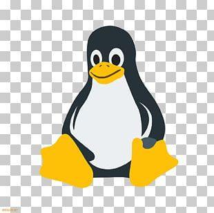 Linux Distribution Computer Icons Operating Systems Ubuntu PNG