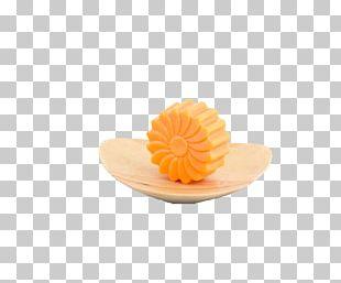 Petal Orange PNG