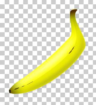 Banana Bread Banana Pudding Cream Pie PNG