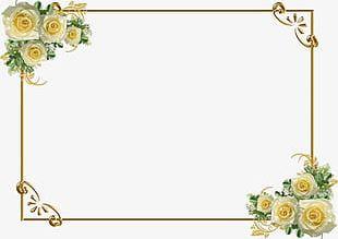 Golden Flower Border PNG