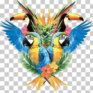 Pug Macaw Parrot Icon PNG