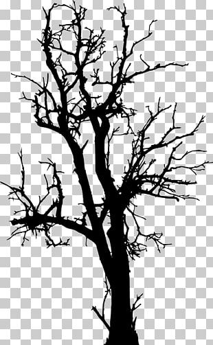 Twig Tree Silhouette PNG
