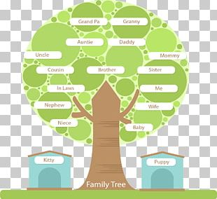 Family Tree Tree Structure PNG