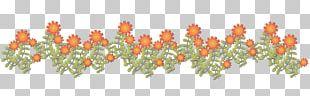 Bell Pepper Chili Pepper Flower Window Valances & Cornices France Télécom PNG