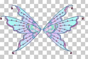 Butterfly Insect Pollinator PNG