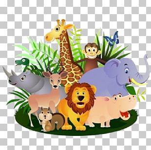 Hippopotamus Cartoon Safari PNG