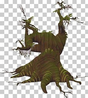 Old School RuneScape Tree Coarse Woody Debris Forest PNG