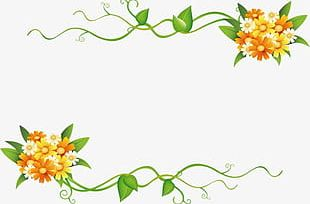 All Kinds Of Beautiful Flower Border PNG