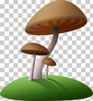 Mushrooms Brown PNG