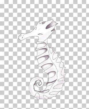 Seahorse White Pipefishes And Allies Line Art H&M PNG