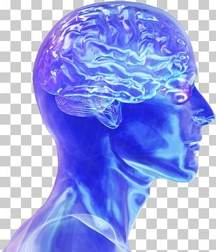 Blue Brain Project Human Brain Neuroscience Electrical Brain Stimulation PNG