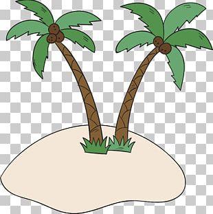 Coconut Tree Arecaceae Beach PNG