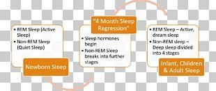 Organization Psychologist Sleep Group Dynamics Regression Analysis PNG