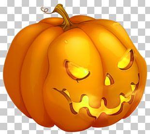 Cucurbita Pepo Pumpkin Halloween PNG